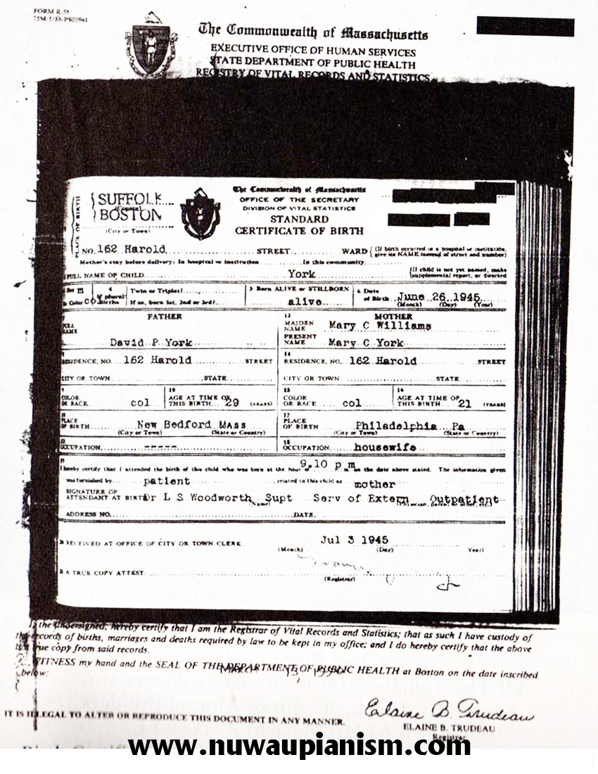 Boston City Hall Marriage Certificate Red